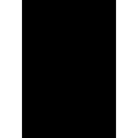 Portrait Gainsbourg